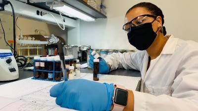 Imari in the lab